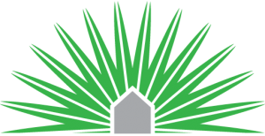 silver-palm-logo-siteicon